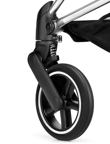 Коляска Cybex Mios Black Butterfly (18)