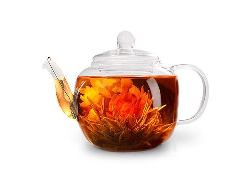 Заварочный чайник LUCKY 500 мл со стальным фильтром (жаропрочное стекло) Fissman 9358 (1)