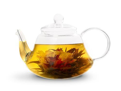 Заварочный чайник LUCKY 600 мл со стальным фильтром (жаропрочное стекло) Fissman 9361 (1)