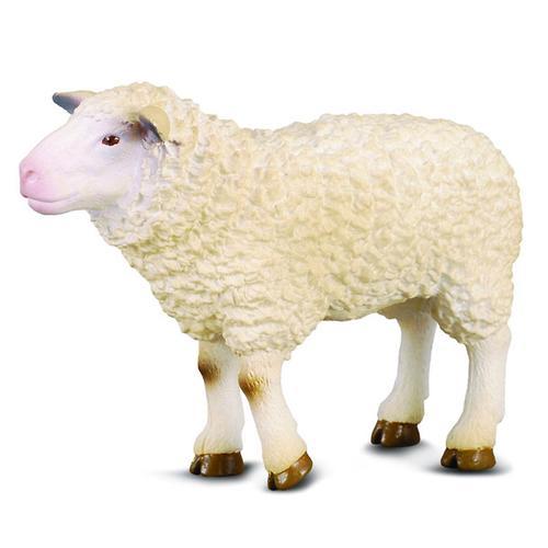 Овца M (1)