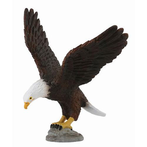 Американский лысый орел M (1)