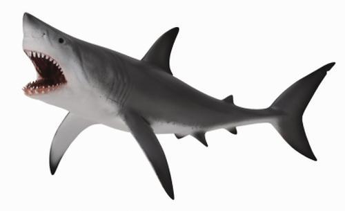 Акула большая белая XL (1)