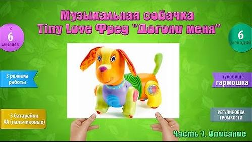 Игрушка-собачка Tiny Love Фрэд Догони меня (10)