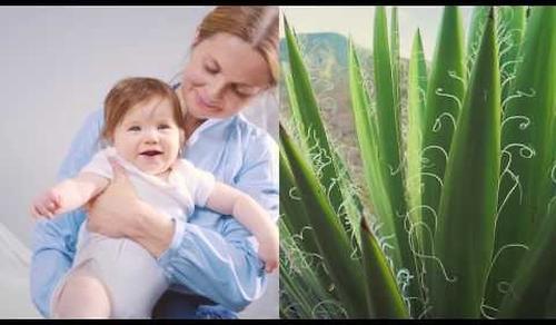 Матрас детский Plitex Eco Flex Cotton (8)