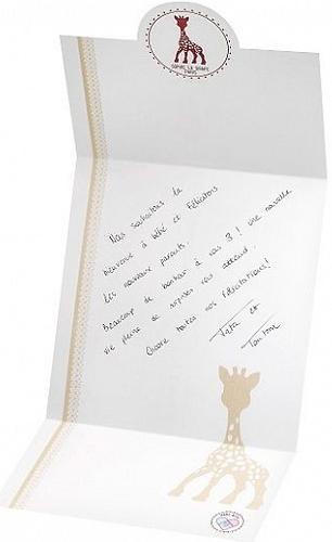 Набор Vulli Жирафик Софи с подарочной упаковкой (15)